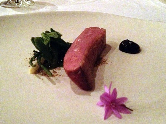 Course 7 - Duck, coastal plants, calamari cream